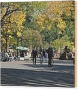 The Mall In Central Park Wood Print