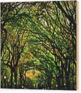 The Mall In Fall Wood Print