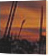 The Marsh At Sunset Wood Print