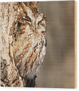 The Master Of Camouflage Wood Print