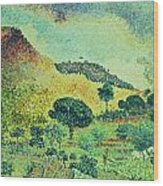 The Maures Mountains Wood Print by Henri-Edmond Cross