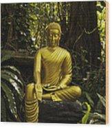 The Mercy Of Buddha Wood Print