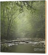 The Middle Prong River In Fog Wood Print