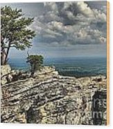 The Mountain Lookout Wood Print