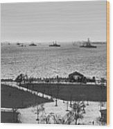 The Navy Fleet In New York Bay Wood Print