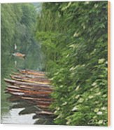 The Neckar River Wood Print