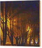 The Night Lights Wood Print