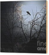 The Night The Raven Appeared In My Dream . 7d12631 Wood Print by Wingsdomain Art and Photography