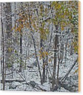 The October Blizzard Begins Wood Print