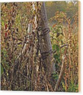 The Old Fence Post Wood Print