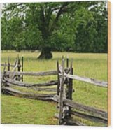 The Old Fence Wood Print by Valia Bradshaw