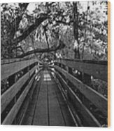 The Old Hillsborough Bridge Wood Print