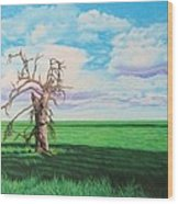 The Old Man On Green Valley Road Wood Print