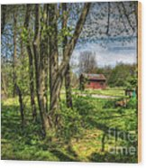 The Old River Shed Wood Print