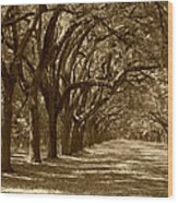The Old South Series In Sepia Wood Print