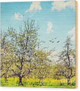 The Orchard Wood Print by Darren Fisher