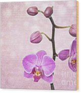 The Orchid Tree - Texture Wood Print