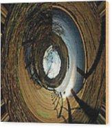 The Other Side Wood Print by LeeAnn McLaneGoetz McLaneGoetzStudioLLCcom