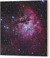The Pacman Nebula Wood Print by Robert Gendler