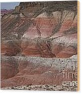 The Painted Desert  8018 Wood Print