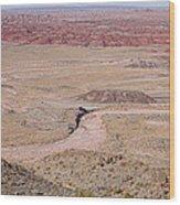 The Painted Desert  8042 Wood Print