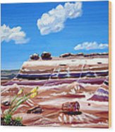 The Painted Desert And The Petrified Foreste Wood Print