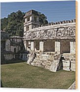 The Palace    Palenque Wood Print
