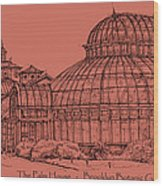 The Palm House In A Salmon Pink  Wood Print