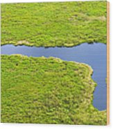 The Pantanal Seen From The Sky Vii Wood Print