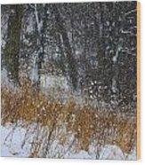 The Pasture Lane Wood Print