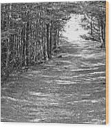 The Path Wood Print