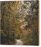The Path Less Traveled 2 Wood Print