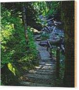 The Path To Iron Creek  Wood Print