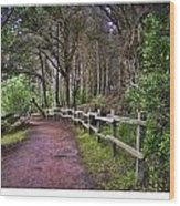 The Path To The Woods Wood Print