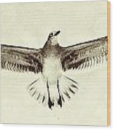 The Perfect Wing Wood Print