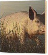 The Pink Pig Wood Print
