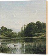 The Pond At Gylieu Wood Print