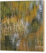 The Pond Shallows Wood Print