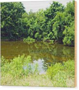 The Pond View Wood Print