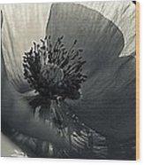 The Poppy Wood Print
