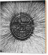The Pupil Of The Eye Wood Print