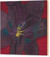 The Purple Lily Wood Print