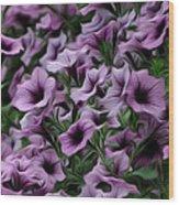 The Purple Sea Wood Print