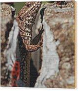 the random Lizard  Wood Print