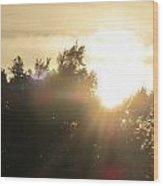 The Rays Of Light Wood Print