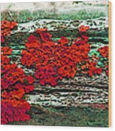The Red Clouds Wood Print