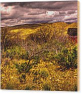 The Red Shed At Red Rock Canyon Wood Print by David Patterson