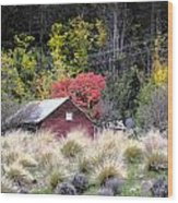 The Red Shed Wood Print