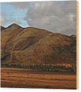 The Richardson Mountains At The Arctic Wood Print