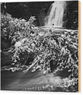 the river at the Gleno or Glenoe Waterfall beauty spot county antrim Wood Print